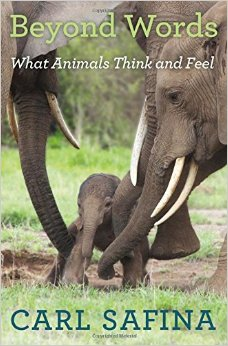 BOOK JACKET: Beyond Words: What Animals Think and Feel