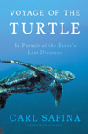 BOOK JACKET:Voyage of the Turtle